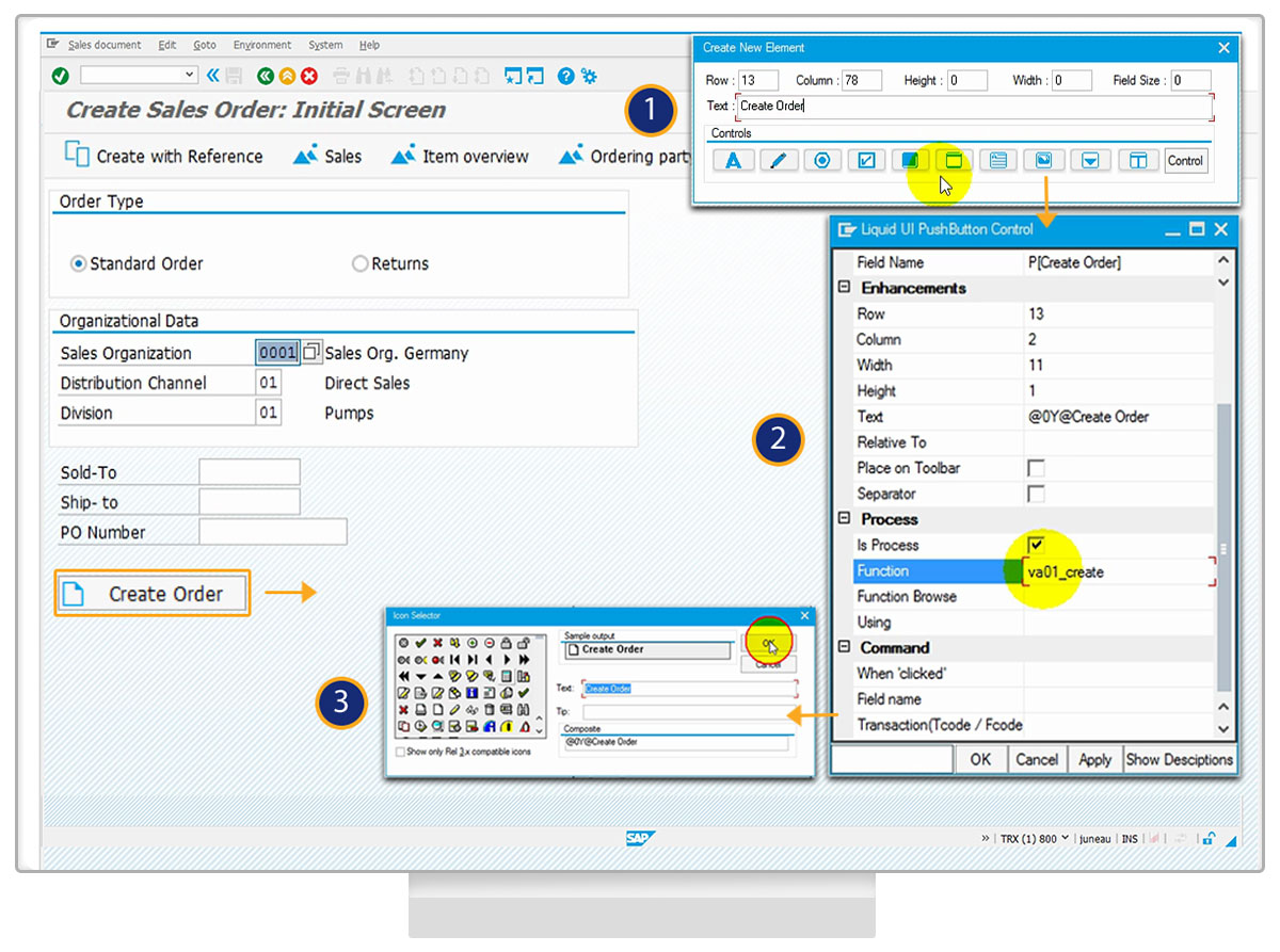 Desktop - SAP Customization Within SAP GUI