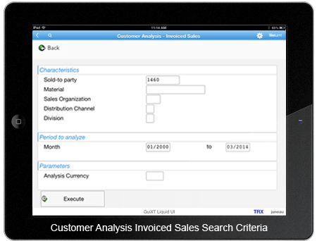 Customer Analysis Invoiced Sales Search Criteria