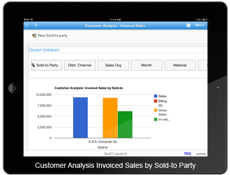 Customer Analysis Invoiced Sales by Sold-to Party