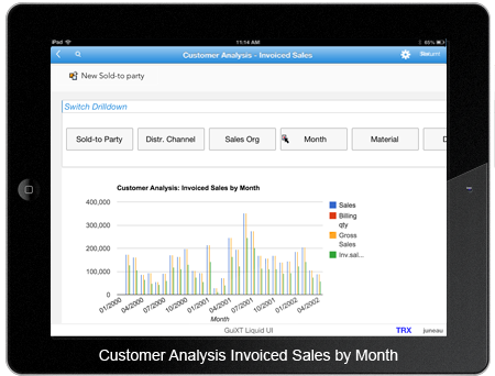 Customer Analysis Invoiced Sales By Months